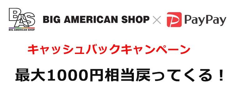 【期間限定】BAS×PayPayキャンペーン|最大1000円相当戻ってくる!
